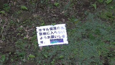 濃溝の滝12