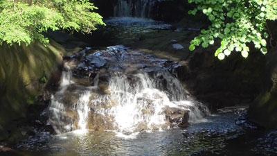 濃溝の滝8