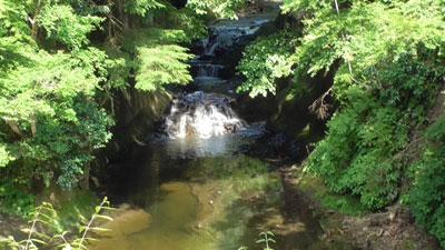 濃溝の滝7