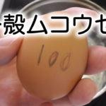 100均・ダイソーのたまごのプっチン穴あけ器