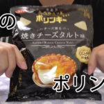 大人の三ツ星ポリンキー チーズ薫る焼きチーズタルト味