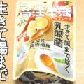 菌活生活タブレッツ(カバヤ食品)、気軽に始める、乳酸菌でおなかキレイ
