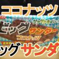ビッグサンダーココナッツ(有楽製菓)、パフ入りサクサククッキー!