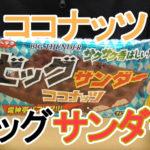 ビッグサンダーココナッツ(有楽製菓)