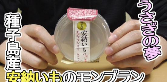 うさぎの夢 種子島産 安納いものモンブラン仕立て二層デザート