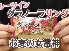 グラノーラサンダー-フルーツイン-お麦の女雷神(有楽製菓)