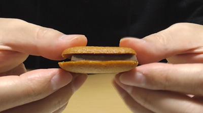北海道廳立圖書館-チョコサンドクッキー(北菓楼)11