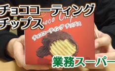 業務スーパー-チョココーティングチップス