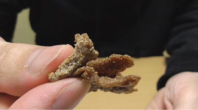 大豆で作ったソイジャーキー6