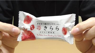 博多苺きらら(風美庵)6