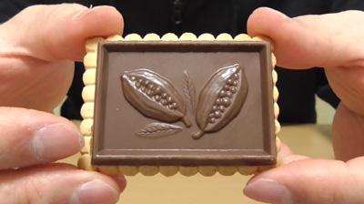 業務スーパー-バタービスケット&ミルクチョコレート5