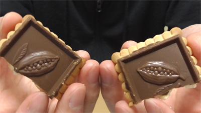 業務スーパー-バタービスケット&ミルクチョコレート9