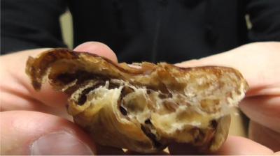 ブランのチョコデニッシュ 2本入8