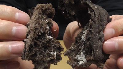 クッキー&クリームパン(ヤマザキ×YBC)15