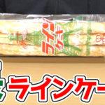 ラインケーキ(有限会社よしの屋製菓)
