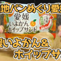 ご当地パンめぐり愛媛県 愛媛いよかん&ホイップサンド(フジパン)、いよかん使用のマーマレードとホイップクリームをサンド!