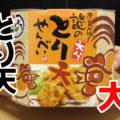 謎のとり天せんべい(宝物産)、大分県のソウルフード、鶏肉の天ぷらのお煎餅、大分県土産