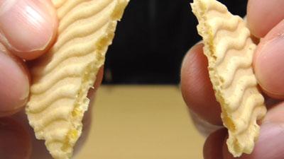 庶民の味-大分-謎のとりせんべい12
