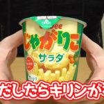 じゃがりこ-サラダ(カルビー)