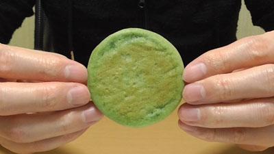 千葉-飯岡貴味メロン-もちもちメロンケーキ(長登屋)10