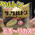 サックルトン とろ~りカスタード(ヤマザキ)、クルトンをつけて揚げ、仕上げにチョコをかけた一品