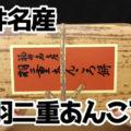 福井名産 羽二重あんころ餅(新珠製菓株式会社)、北海道産小豆使用、食べやすい一口サイズ!