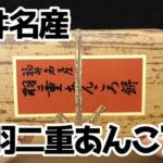 福井名産-羽二重あんころ餅(新珠製菓株式会社)