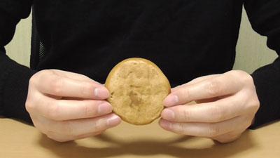 生なごやん(Pasco・敷島製パン)7
