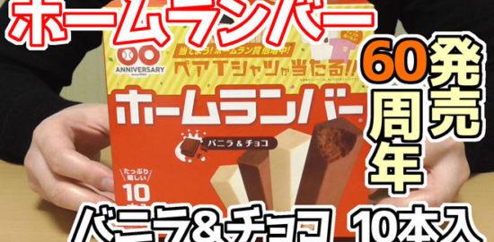 ホームランバー-バニラ&チョコ-10本入(メイトー)