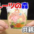 フルーツの森(共親製菓)、1985年に発売されたロングセラー商品、ちなみに、ピンク(さくらんぼ味)、緑(青りんご味)、黄色(バナナ味)となるそうです