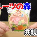 フルーツの森(共親製菓)