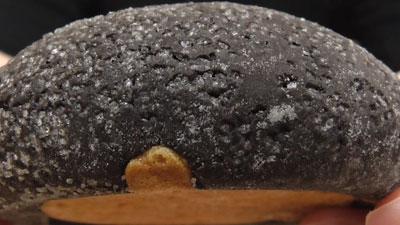三つ子-ココアメロンパン(ヤマザキ)11