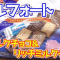 アルフォート FSファミリーサイズ(ミルクチョコ&リッチミルクチョコ)【ブルボン】、お菓子市場という大海に夢とロマンをもって漕ぎ出したロングセラー商品^^